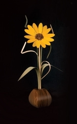 Sunflower Wood Wildflower, 18""